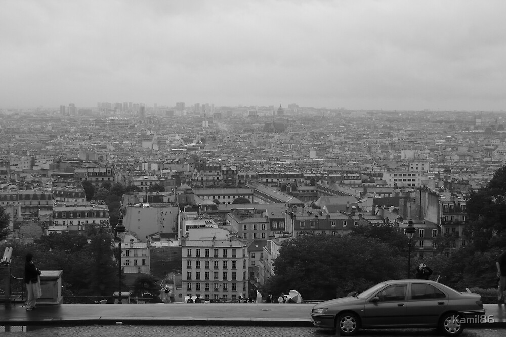A view from above, Paris by Kamil86