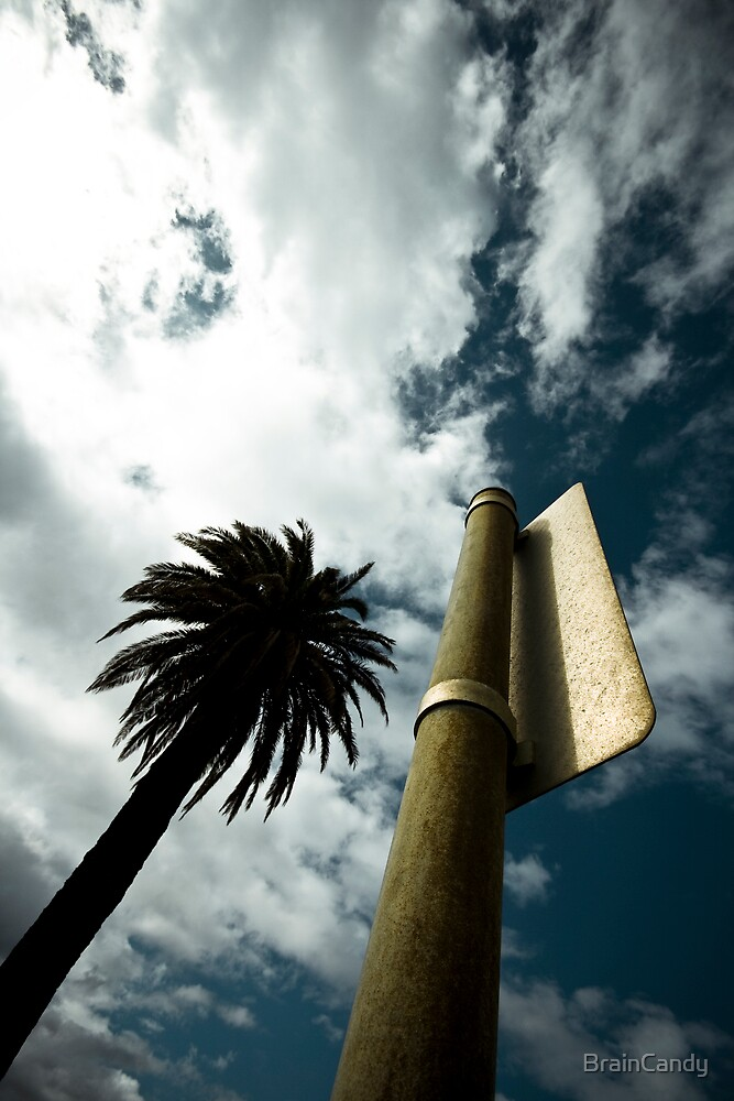 "Palm tree (from the ""We win"" series) by BrainCandy"
