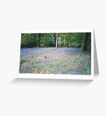 Blue Blanket Greeting Card