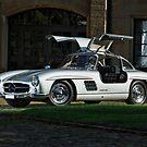 Mercedes 300 SL Gullwing by Stefan Bau
