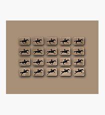 Eadweard Muybridge – 1830-1904 – Locomotion Theory – Horse and Jump – Beige Photographic Print