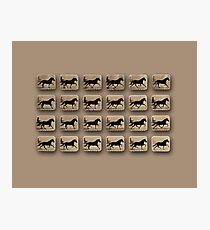 Eadweard Muybridge – 1830-1904 – Locomotion Theory – Horse and Cart – Beige Photographic Print