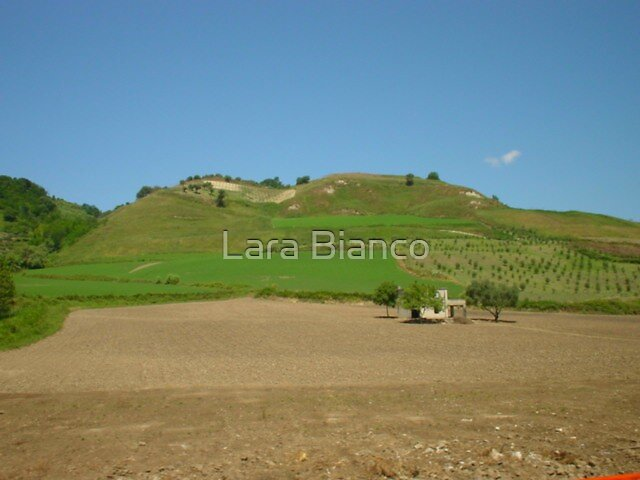 ON THE WAY TO CALABRIA by Lara Bianco