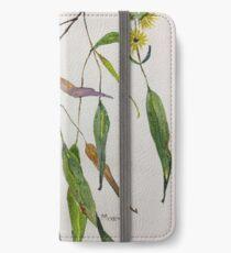 Gum leaves - Botanical illustration iPhone Wallet/Case/Skin