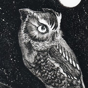 Starry Owl by PrendorianCrab