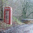 Old English Phone Box by eleean0r