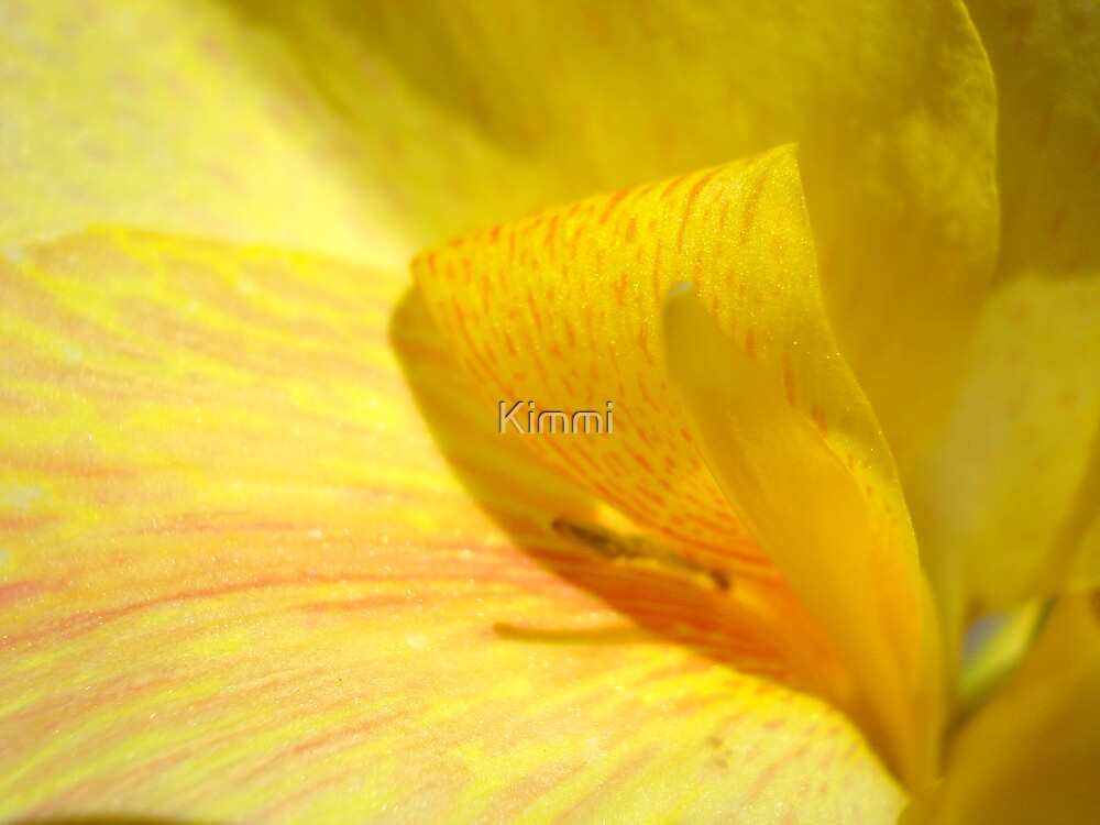 Yellow by Kimmi