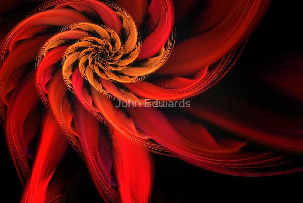 Fiore rosso by John Edwards