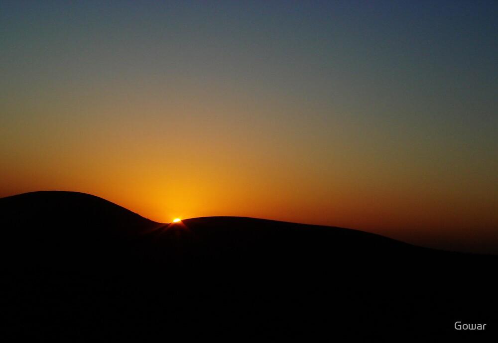 Sunset in the Desert by Gowar