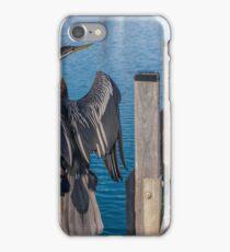 Water bird - Dart  iPhone Case/Skin