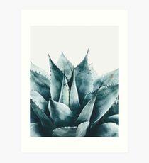 Plant print, Cactus print, Succulent, Scandinavian print, Trendy print, Styled, Pillow, Modern art, Wall art, Print, Minimalistic, Modern Art Print