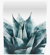 Pflanze print, Kaktus print, Sukkulenten, skandinavischen print, Trendy print, Stil, Kissen, moderne Kunst, Wandkunst, Print, minimalistisch, Modern Poster