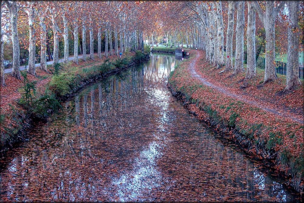 Canal du midi by Puyravaud Frédéric