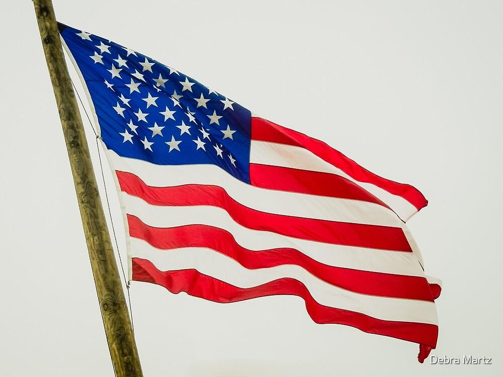 Red White & Blue American Flag by Debra Martz