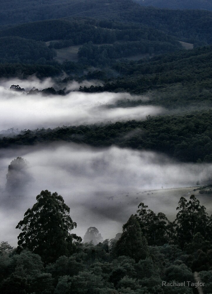 Misty Valley by Rachael Taylor