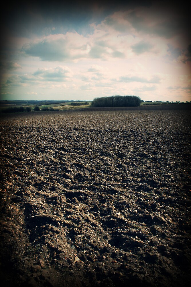 Fulletby Landscape #4 by David Pearson