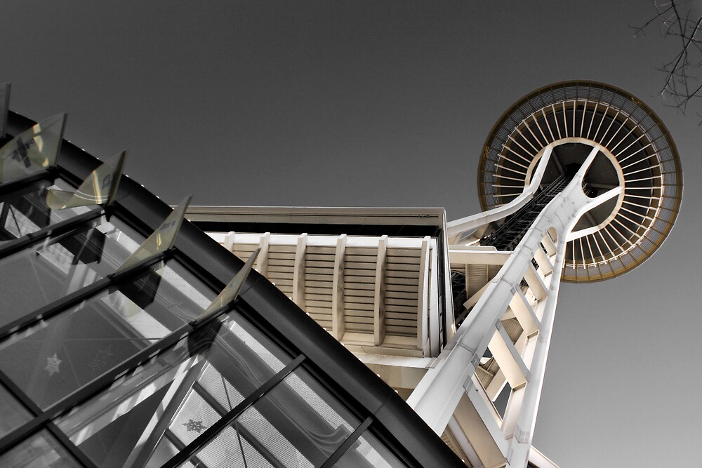 space needle by rutger