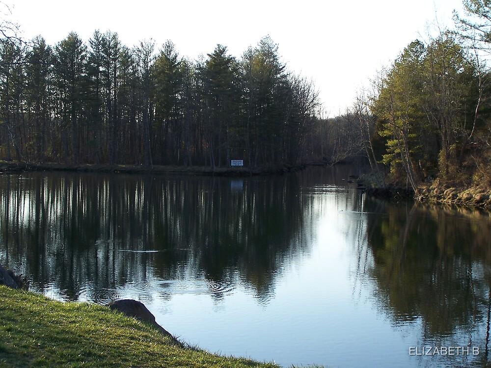 a day at lake by ELIZABETH B