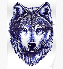 Timber Wolf - Blue Poster