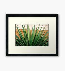 MCDONALDS PLANT! Framed Print