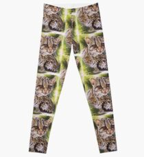 Bantam Leggings