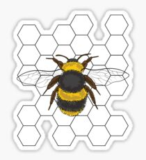 Bumble Bee with Honey Comb Sticker