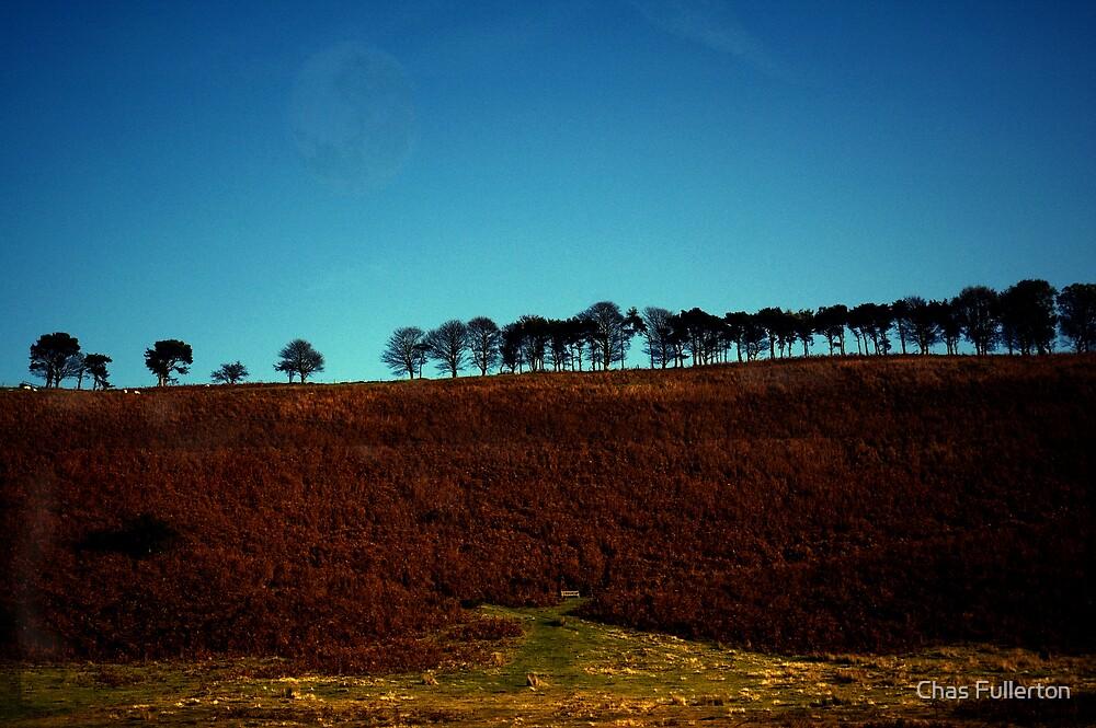 Levisham Ridge by Chas Fullerton
