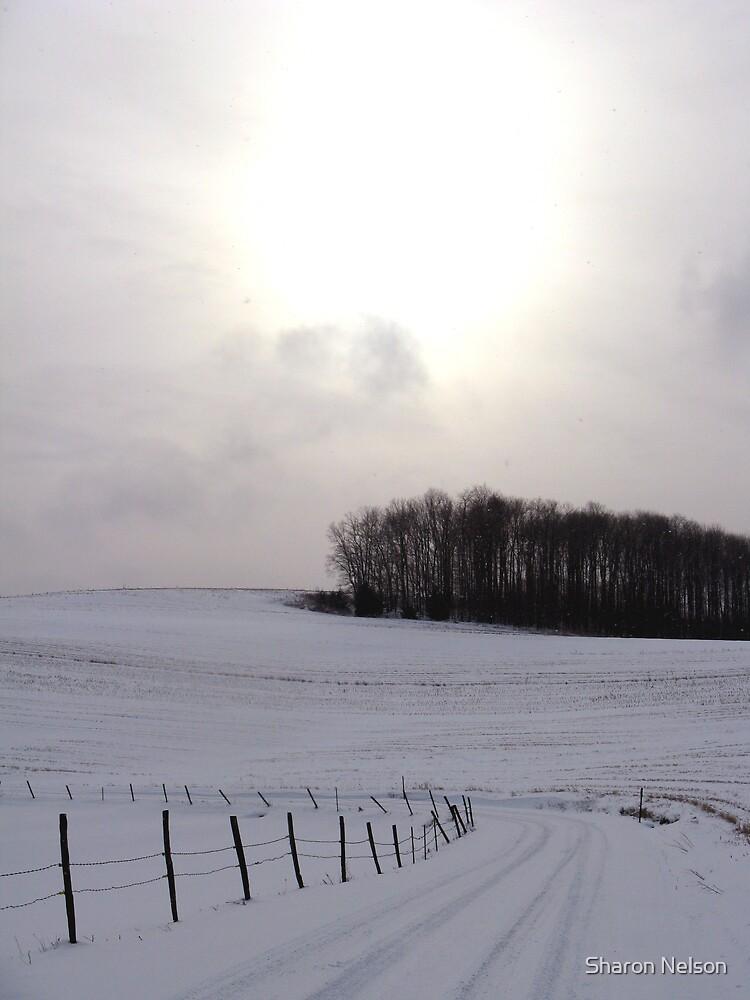 Winter Landscape #1 by Sharon Nelson