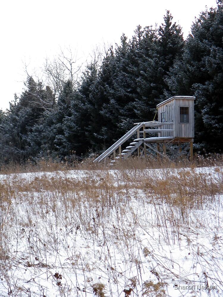Winter Landscape #7 by Sharon Nelson