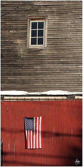 Window Over a Flag by Wayne King
