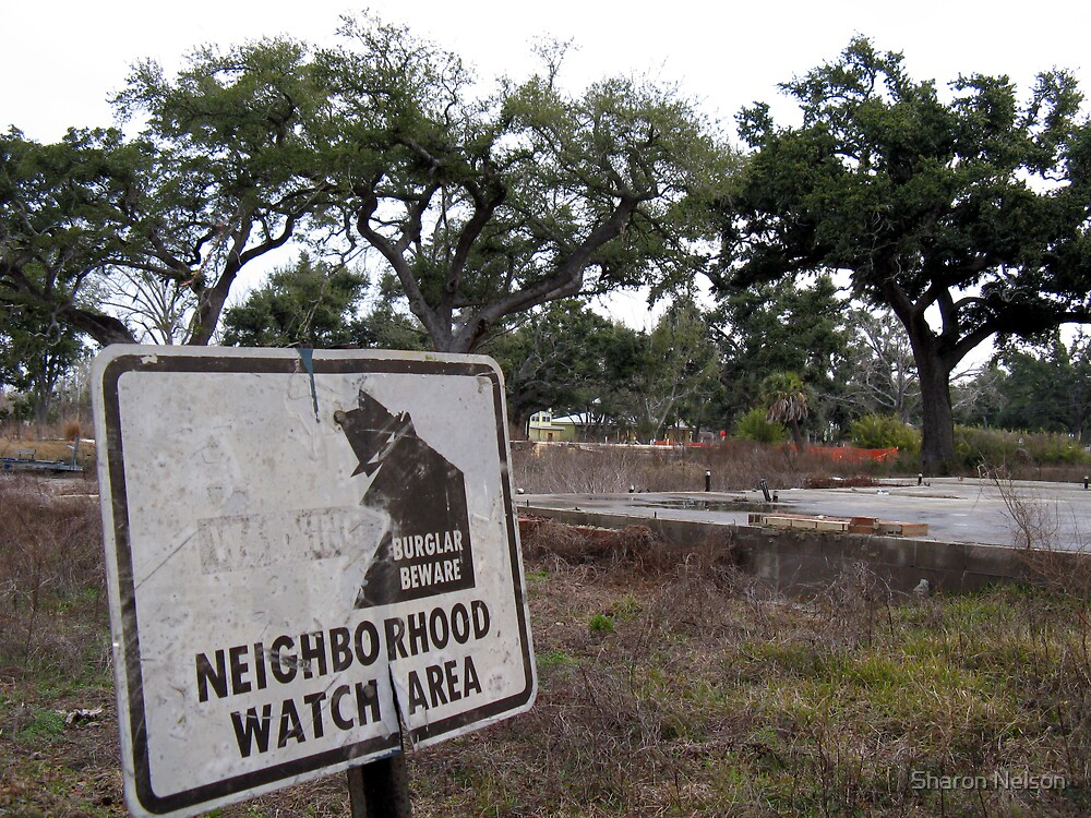 Neighborhood Watch by Sharon Nelson