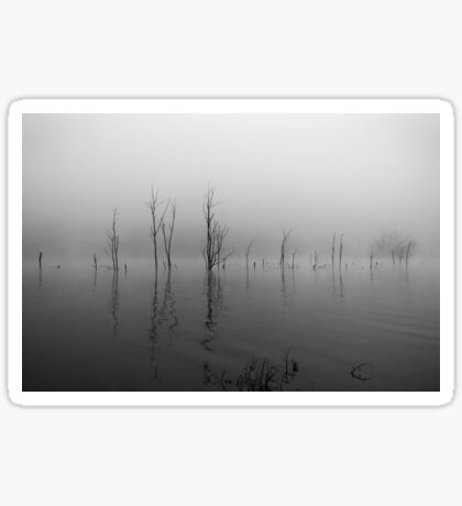 Fog on the Lake Sticker