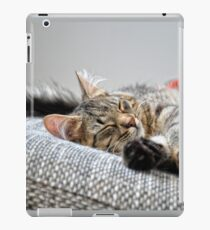 Sleeping beauty iPad Case/Skin