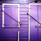 Purple by Nicholas Averre