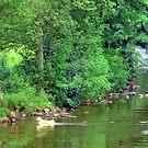River Ericht by Tom Gomez