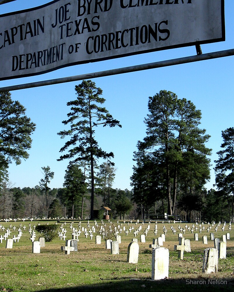 Prison Cemetery by Sharon Nelson