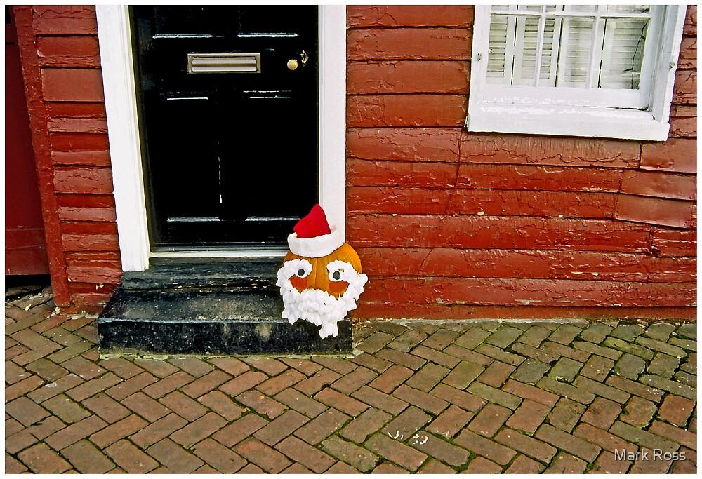 Whimsical Santa Head by Mark Ross