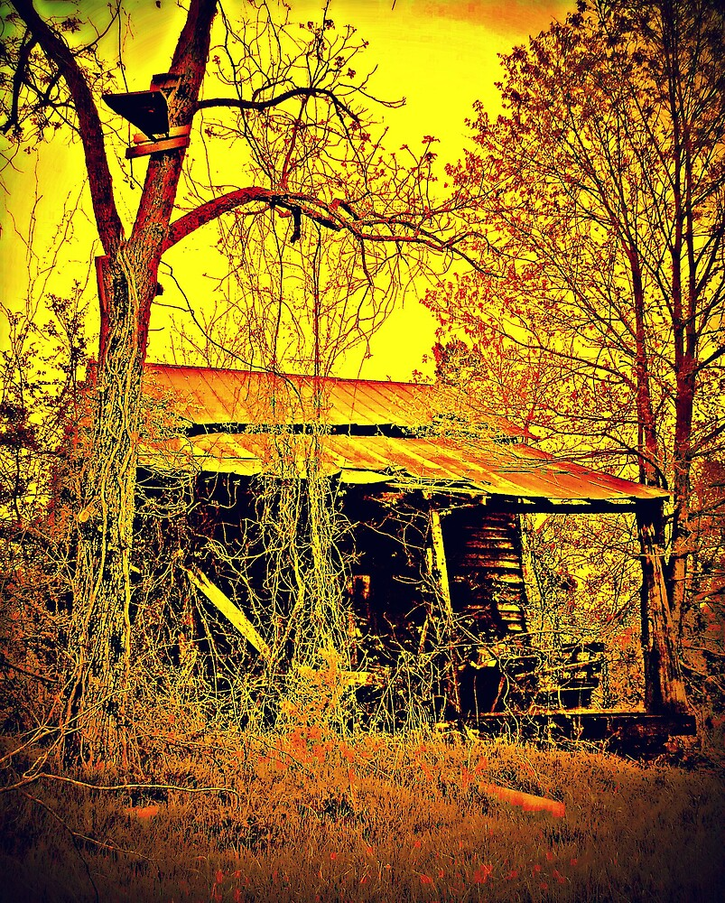 Old House by Kristie King