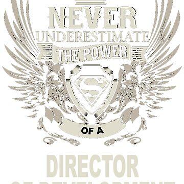 DIRECTOR OF DEVELOPMENT by Jadovalees