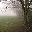 Eastham Country Park by EdgeOfReality