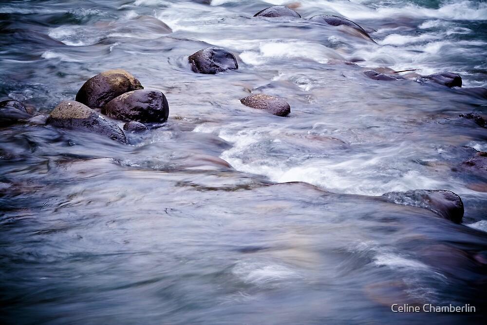 Let It Flow by Celine Chamberlin