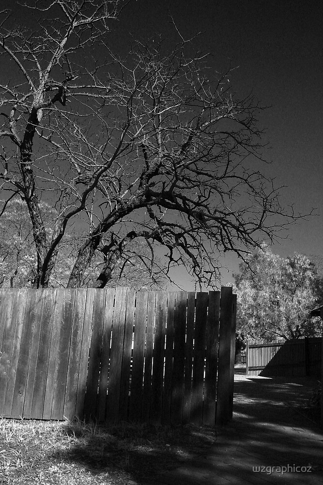 tree and fencing by wzgraphicoz