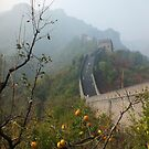 Harvest Time at The Great Wall of China by Lucinda Walter