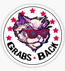 This Kitty Grabs Back Sticker