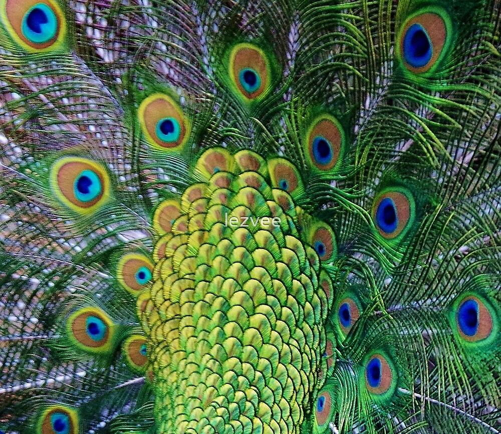 Peacock Tail (Detail) by lezvee