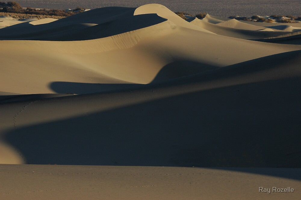 Stovepipe Wells Dunes / Death Valley by Ray Rozelle