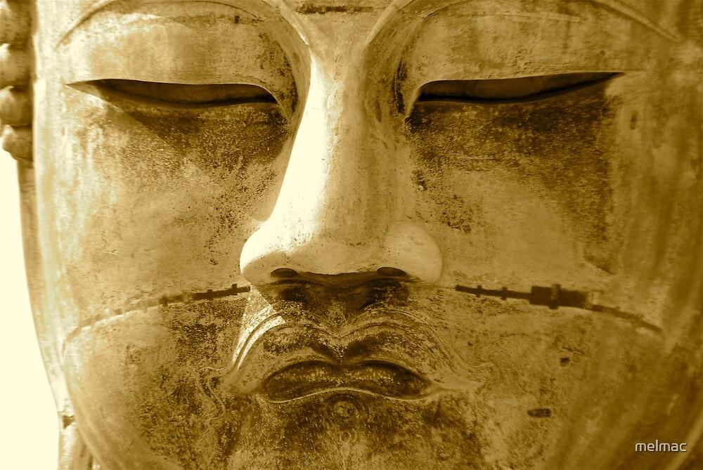 diabutstu head Kamakura series2 by melmac
