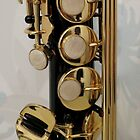 Rods and Buttons - Section of Soprano Sax by EasterDaffodil