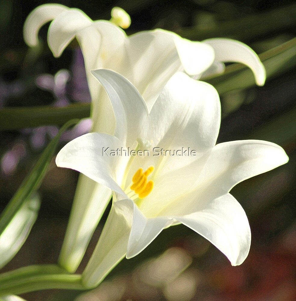 Double Lillies by Kathleen Struckle