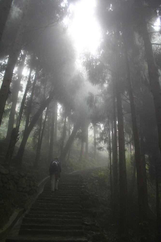 Emei Shan - climbing the holy mountain by tmeaddows